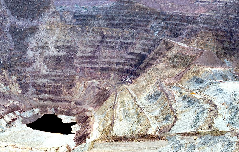 Lavander-Panorama.jpg