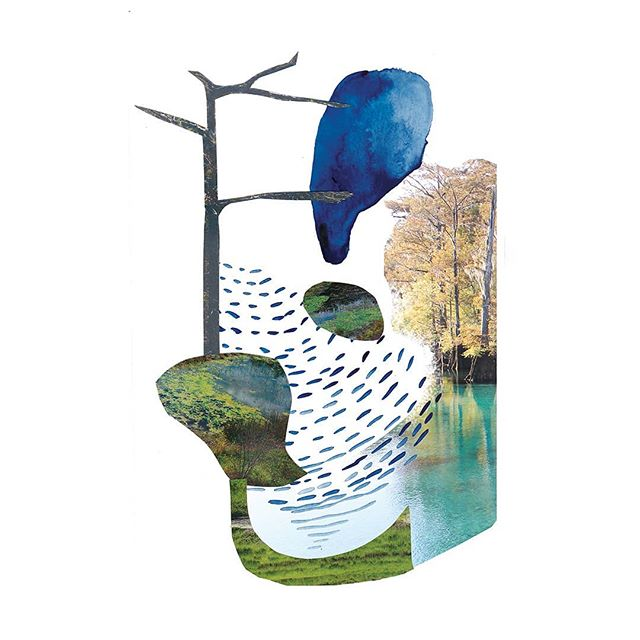 """Wetland,"" a digital collage by writer, public artist, and landscape architect, Falon Mihalic (@falonland), can be found among the pages of #tempor02. She created this piece to go along with her own essay in the publication, and it is available as a limited-edition artist print. Contact us for pricing info. Also, to subscribe to @tempormag, visit our website, there are only a few copies of this issue left!"