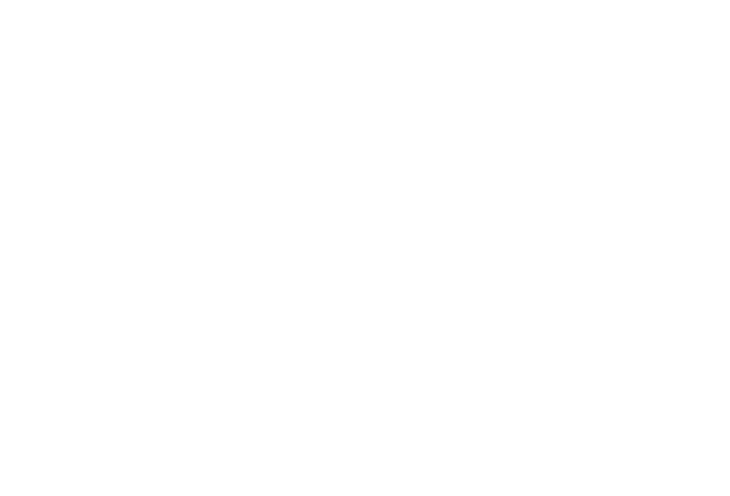 Raising A Village Foundation