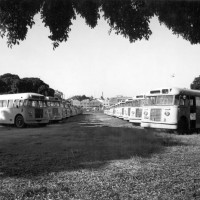 Buses at the CDOP site in 1976. (BCC-B120-30940)