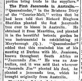An  article  in    The Richmond River Herald and Northern Districts Advertiser , also mentions Richard Bingham, Friday, 23 December, 1938.