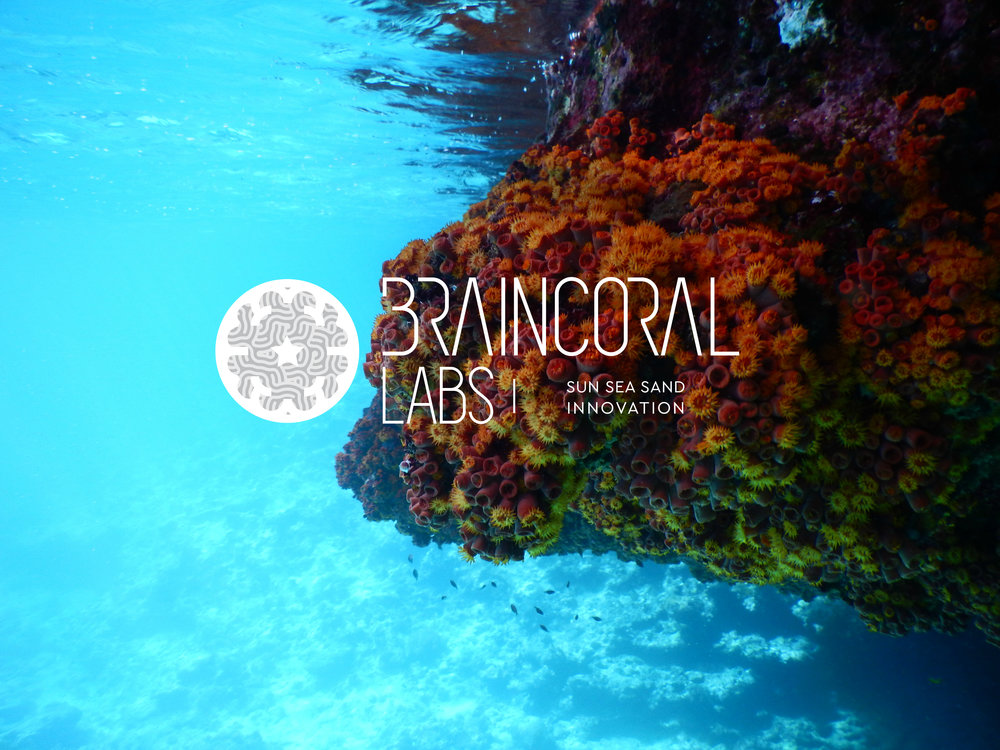 Brain Coral Labs