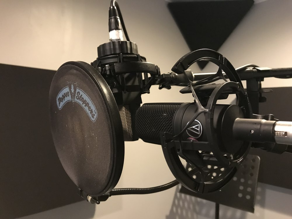 AKG C 414 (left) - AT4040 (right)