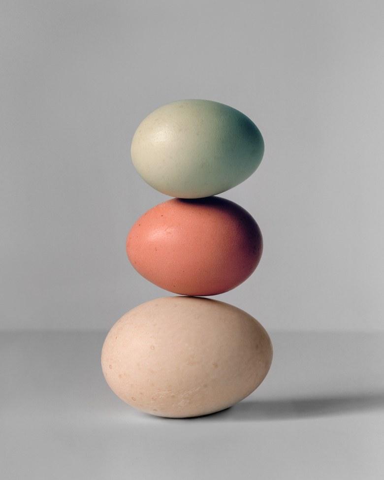 Eggs by Derek Henderson