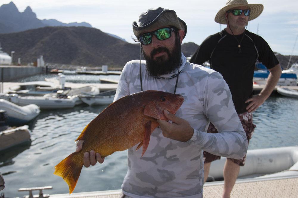 fish pic 8.JPG