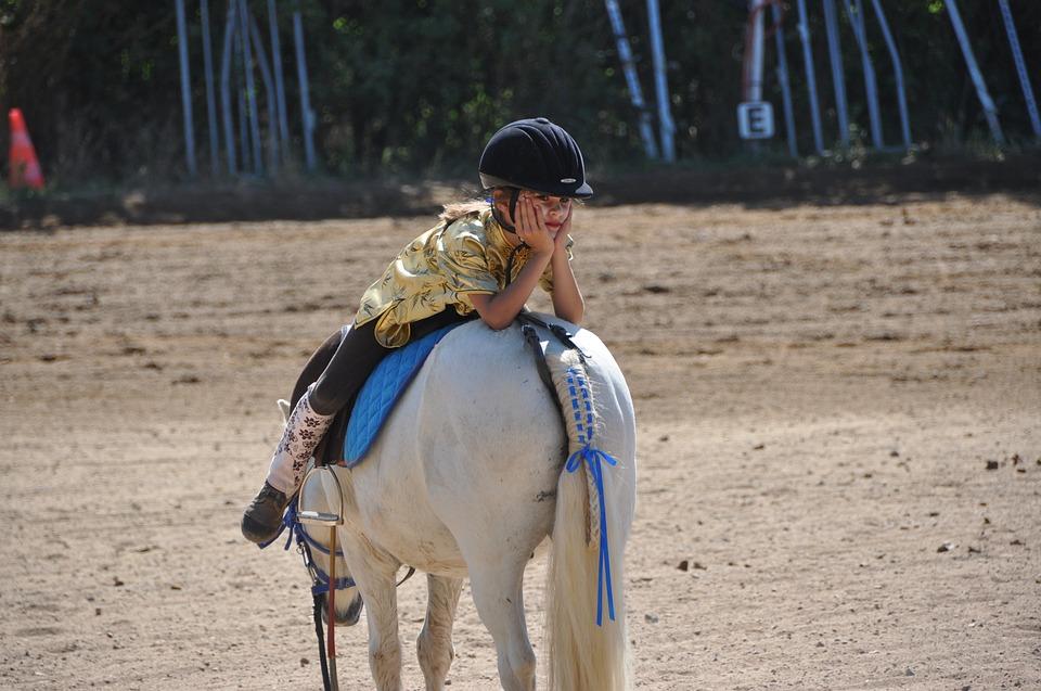 horse-1808727_960_720_CC.jpg