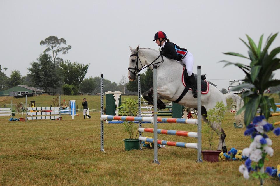 horse-jumping-450548_960_720_CC.jpg