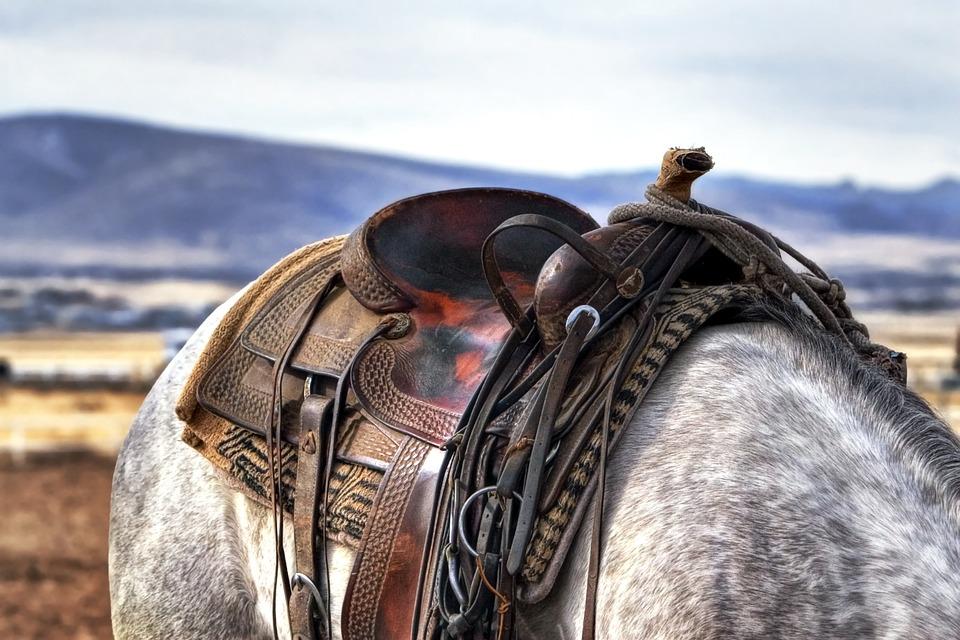 saddle-419745_960_720_CC.jpg