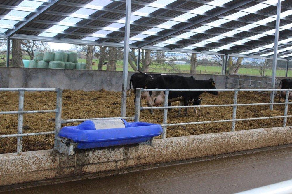 Mendip Barn & Calving Barn Sept  (3).jpg