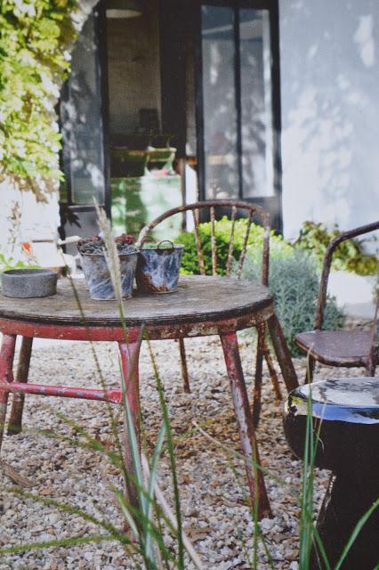 jardin_ile_de_r_milk