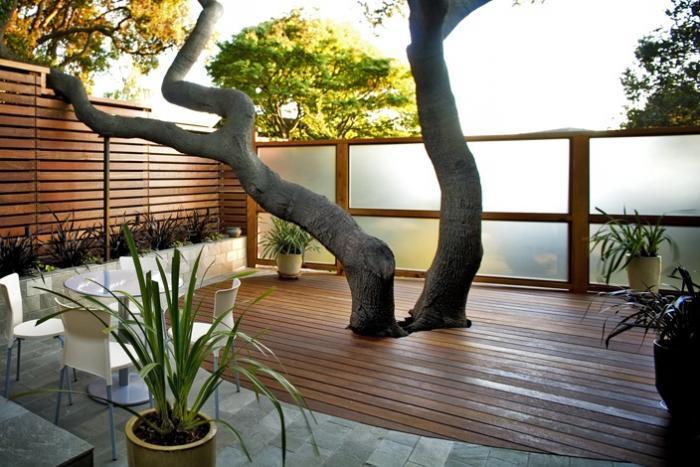 700_tree-4