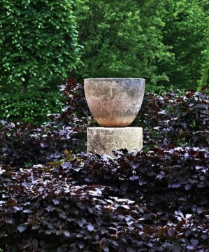 arne maynard copper beech spiral l Gardenista