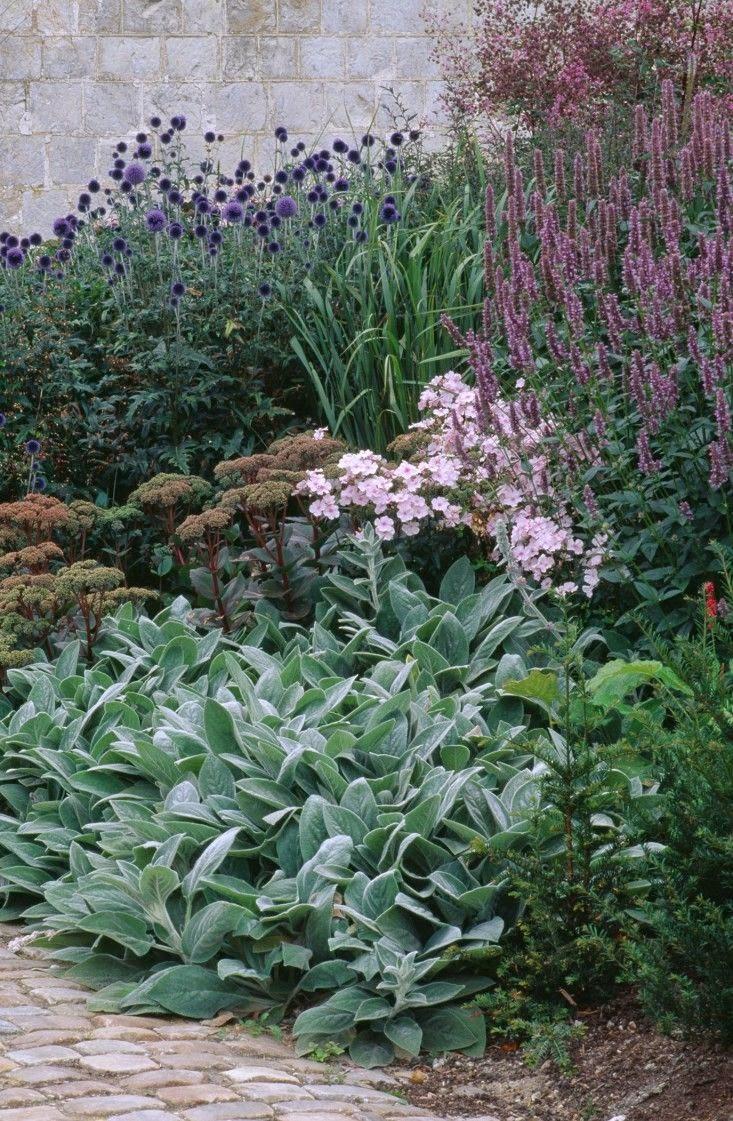Front Garden at Bury Court, photo Clive Nichols