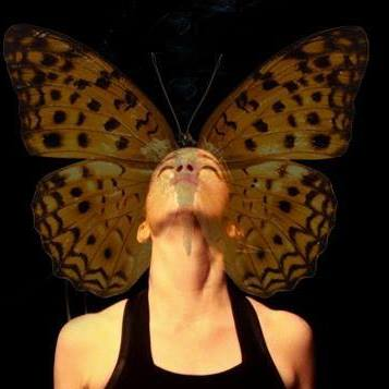 butterflydana.jpg