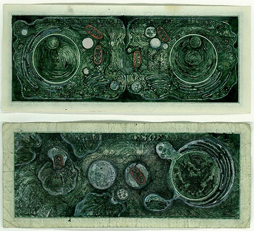 Mel Chin,  Drawn Currency Series: Apoptosis, 2006.    Ink on U.S. currency (1) dollar denomination.  2 5/8 x 6 1/8 inches  Collection of Jeffrey Beauchamp and the late Toni Beauchamp.