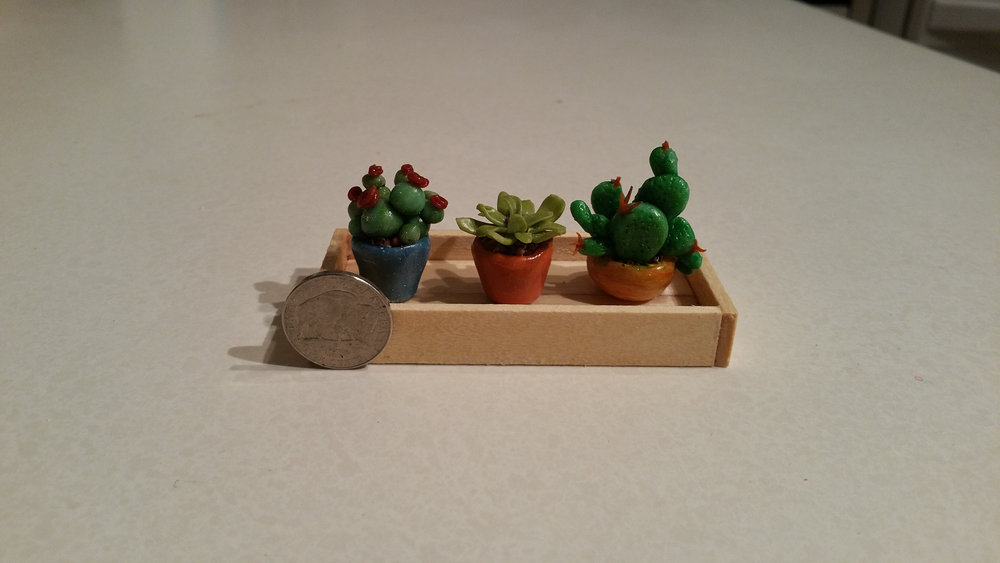 Sculpted Cacti  no scale