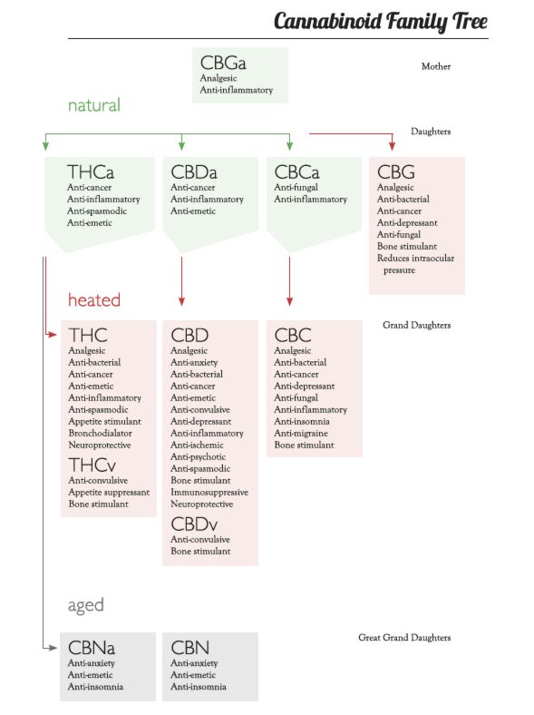 I recognize the visual quality of this chart is a little fuzzy. I took a screen shot of it. If you want to see it in all of it's crispness and glory, you can purchase the Cannabis Class Resource Guide  here .