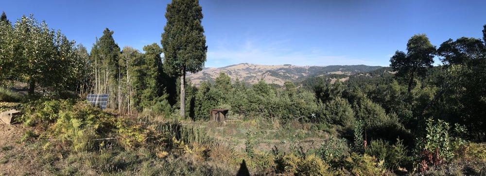 Alpenglow Farms pano.jpg