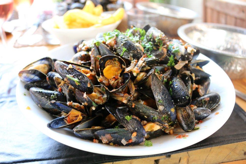 mussels-2114006_1920.jpg