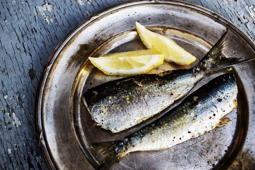 sardines-1489626_1920.jpg