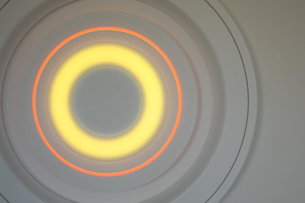 Flat-Torus-1-Day-Detail-2.jpg