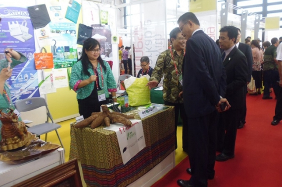 PT Tirta Marta is participating at the 10th China ASEAN Expo at Quangxi