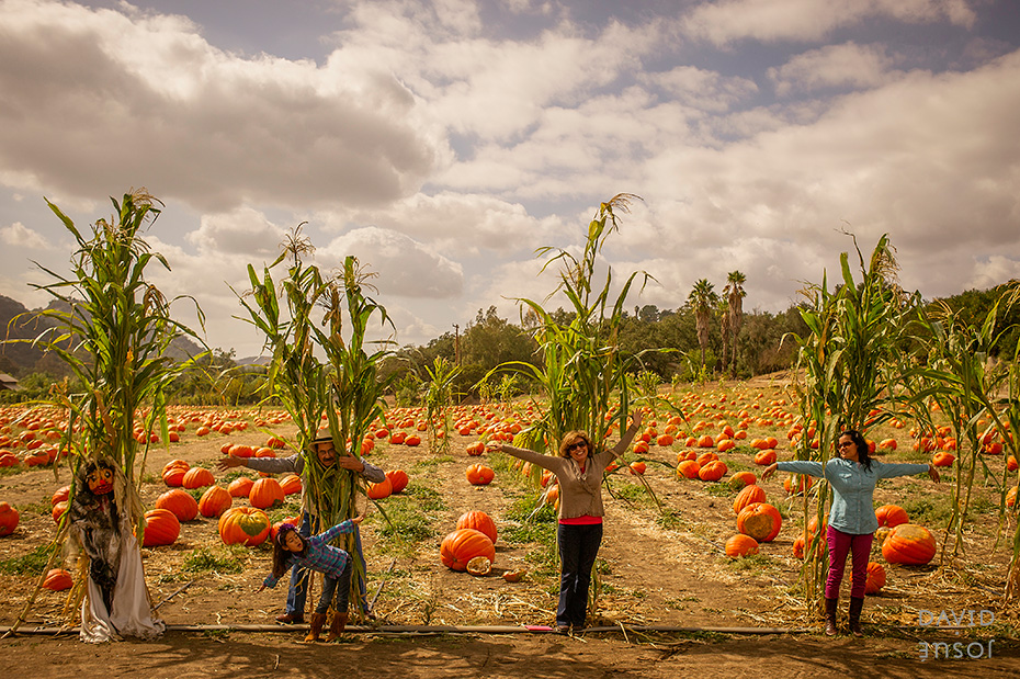 bates-nut-farm-pumpkin-patch.jpg