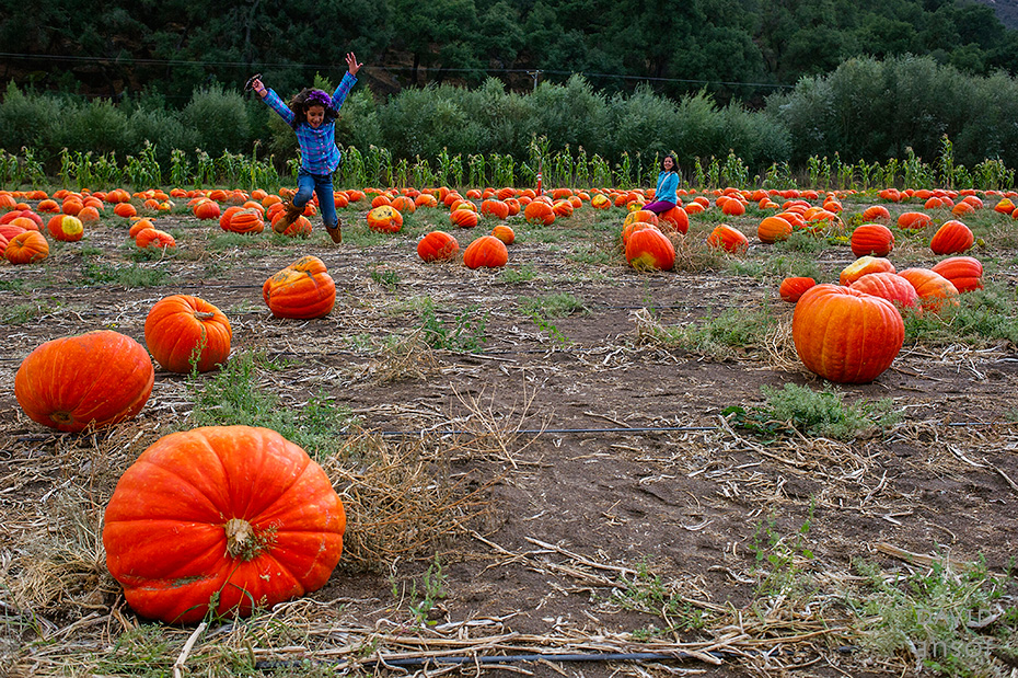 0036_cumple_suegro_bates-nut-farm-pumpkin-patch_101013-edit