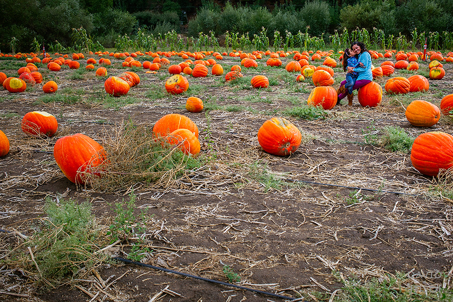 0037_cumple_suegro_bates-nut-farm-pumpkin-patch_101013-edit