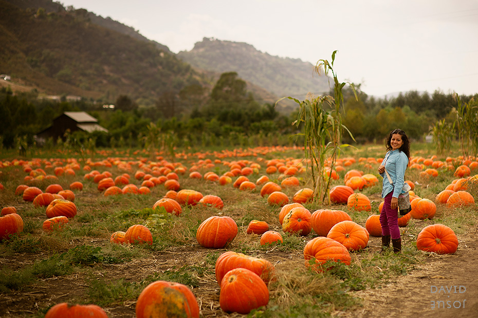 0047_cumple_suegro_bates-nut-farm-pumpkin-patch_101013-edit