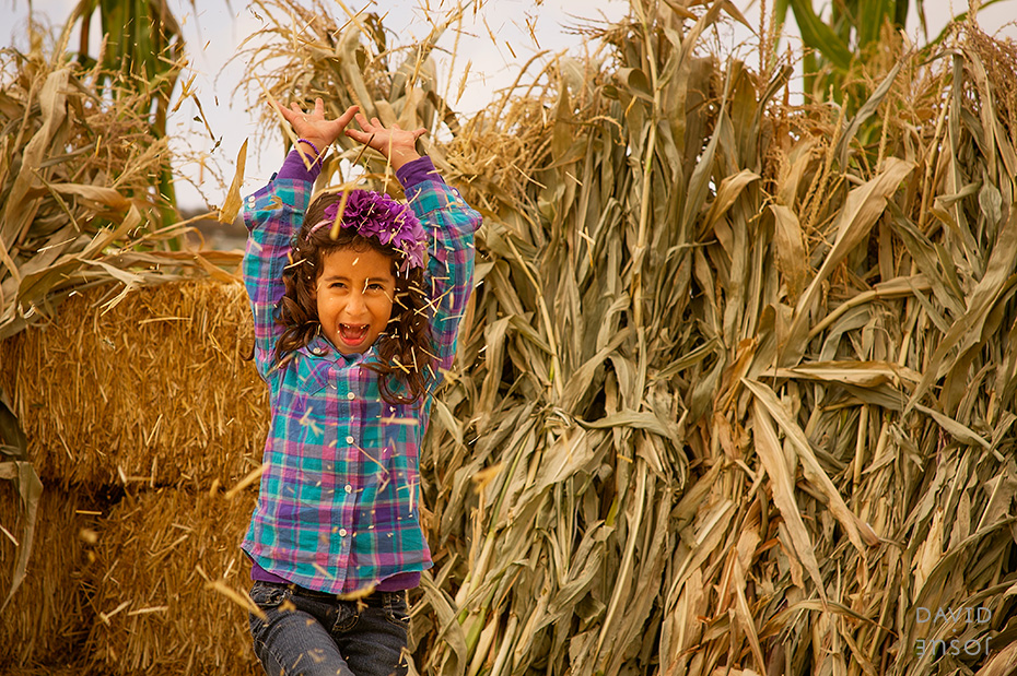 0087_cumple_suegro_bates-nut-farm-pumpkin-patch_101013-edit