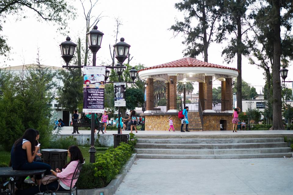 my-pumpkin-plaza-miguel-hidalgo-13