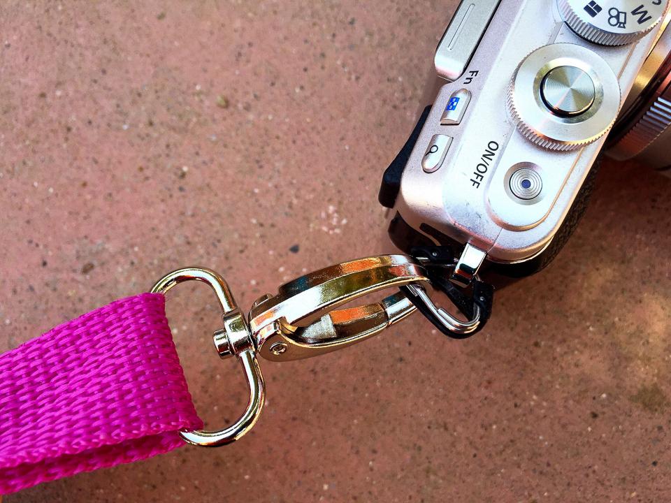 my-pumpkin-straps-2.jpg