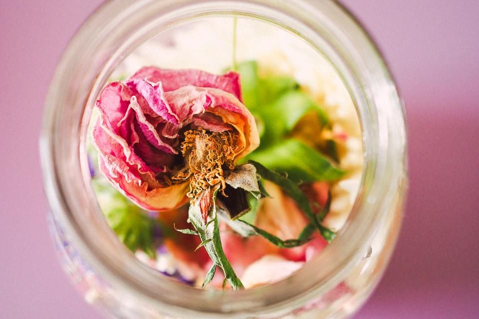 my-pumpkin-flores-secas-8.jpg