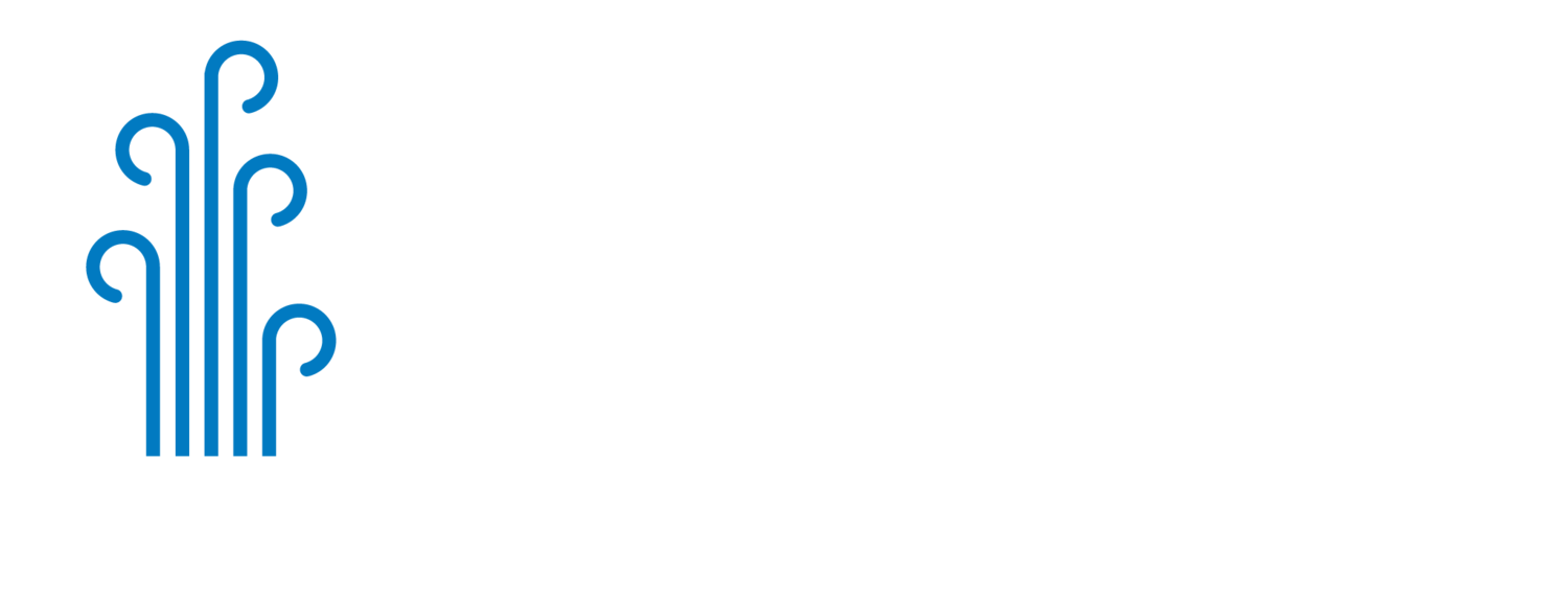 Wellspring Healthcare Associates, PA