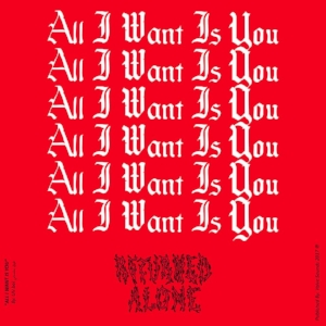 All I Want Is You.jpg