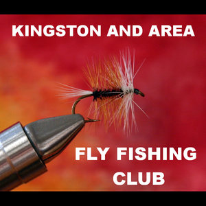 kingston+fly+fishing.jpg