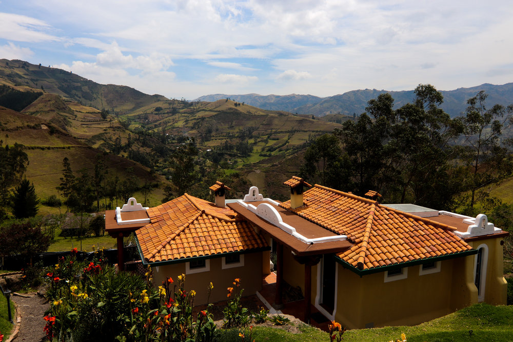 Llulu Llama, Quilotoa Loop, Ecuador