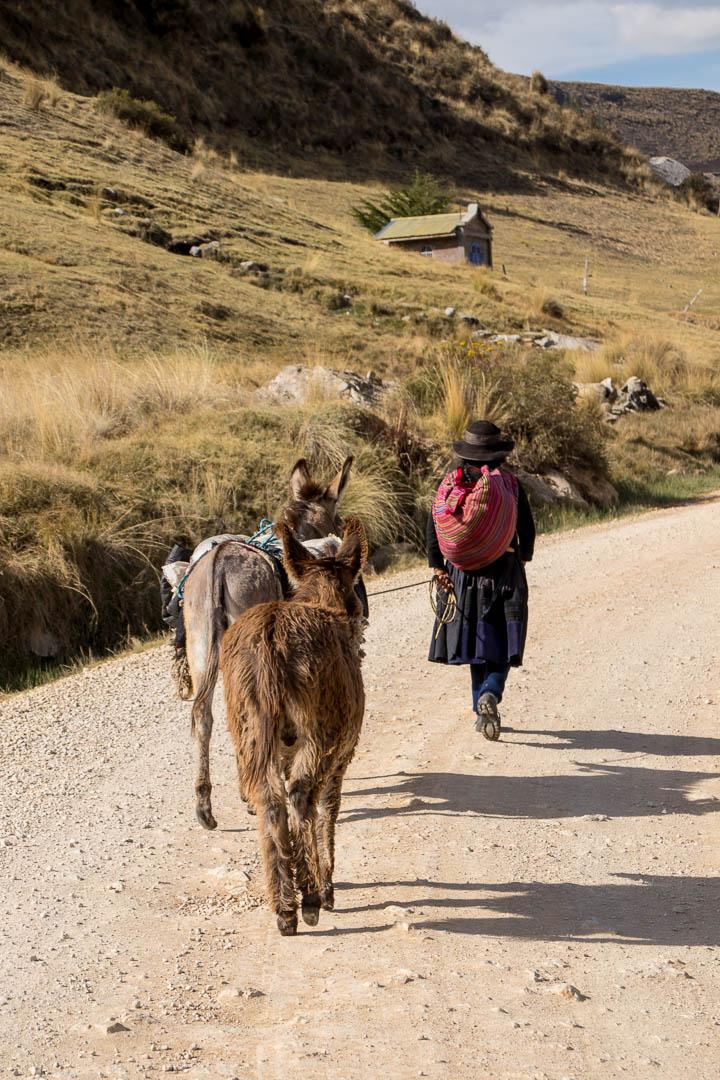 IMG_2235 Indigenous Women Donkeys Peru.jpg