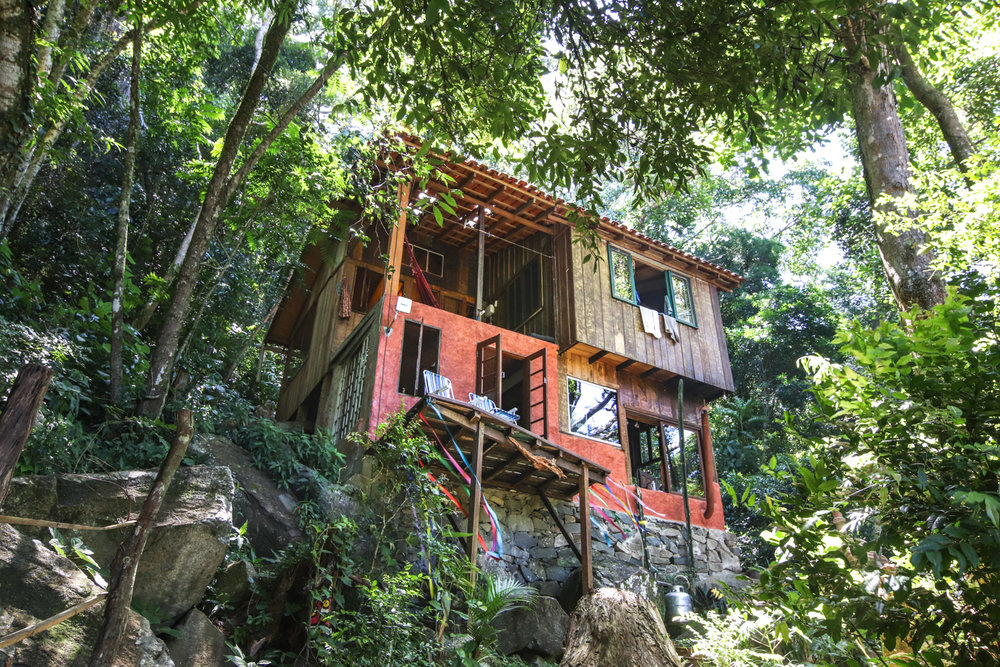 jungle-house-airbnb-florianopolis.jpg