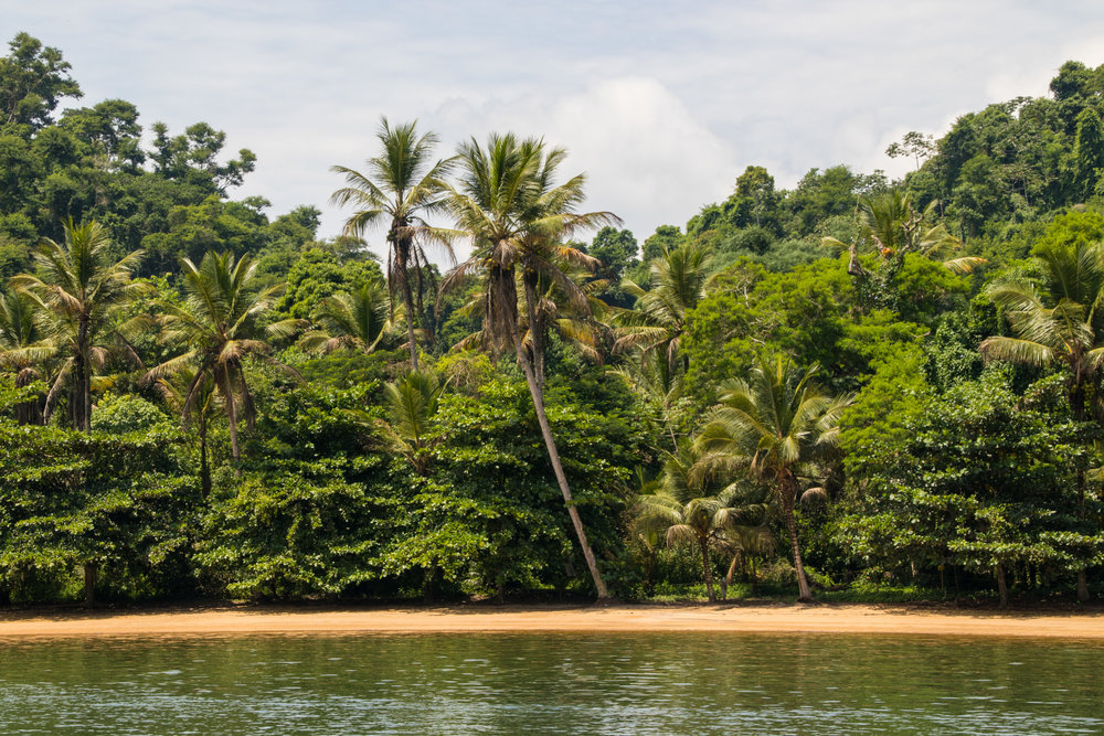 paraty-brazil-beach-jungle-isolated.jpg