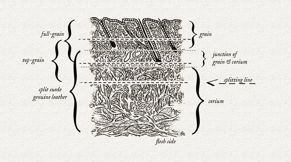 Leathergrains.jpg