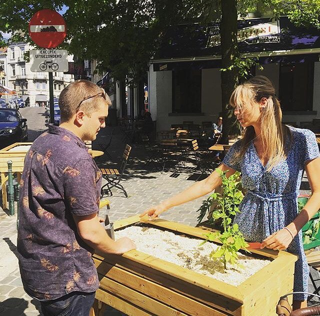 Building a small vegetable garden in a restaurant in the centre of Brussels 🍅🥕🌿 Customers can now pick their basil, tomatoes, cucumber, lettuce and more in the sunny terrasse of @cafedesminimes  #urbanagriculture #greencity #local #localfood #growyourown #growyourownfood #aspeer #inspiration #vegetablegarden