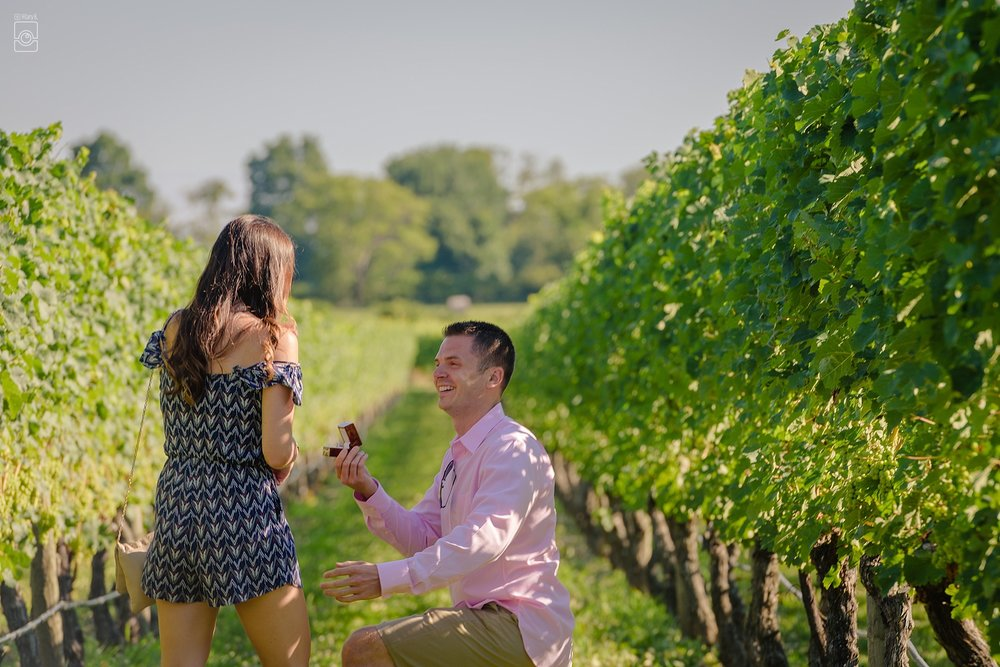 005G+KHBP_7041Proposal_NewportVineyards_RI©HilaryBPhotography_WEB.jpg
