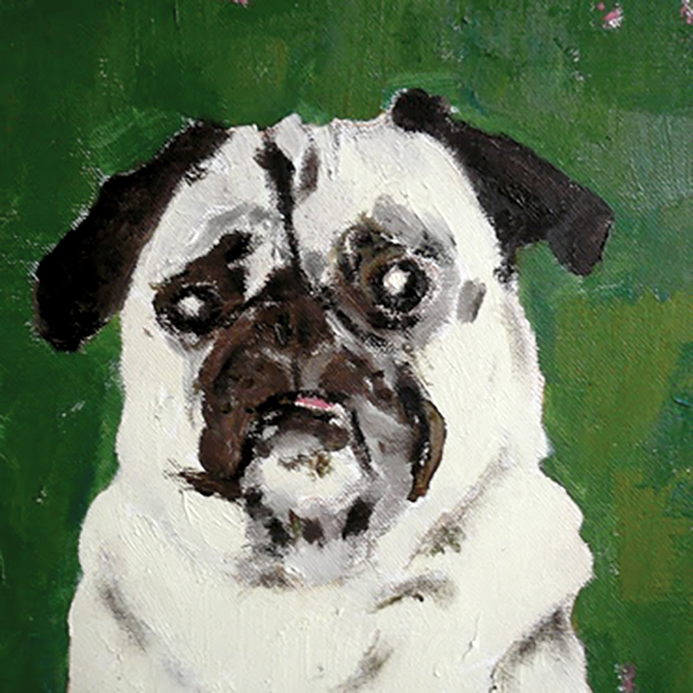 MAO – Original Pet Portrait