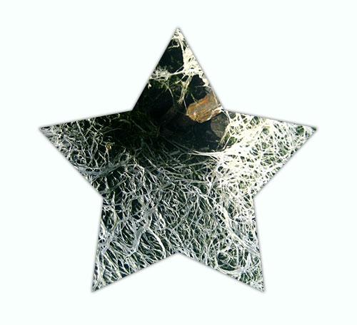 weare_star3_sm_1.jpg