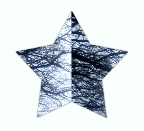 weare_star3_sm_2.jpg