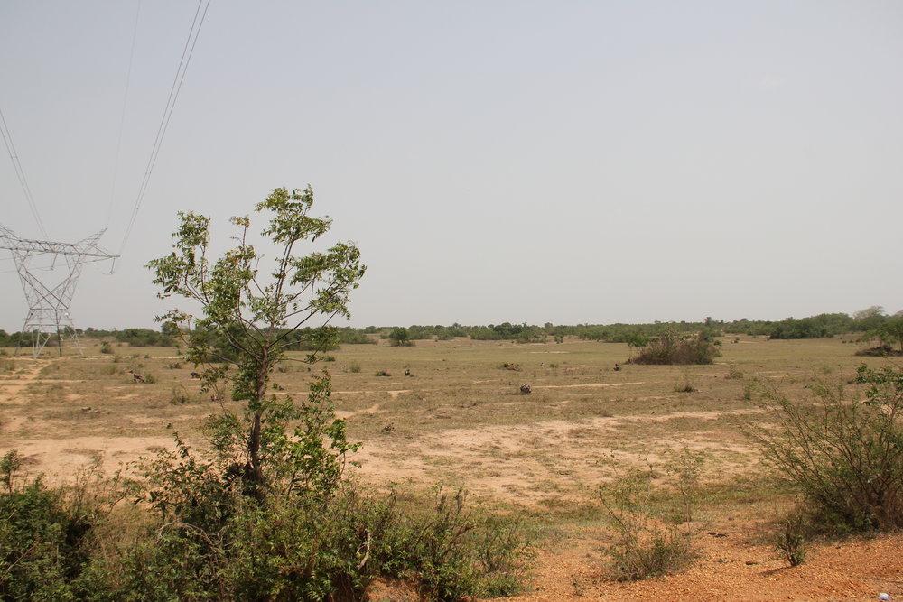 ADA land2.JPG