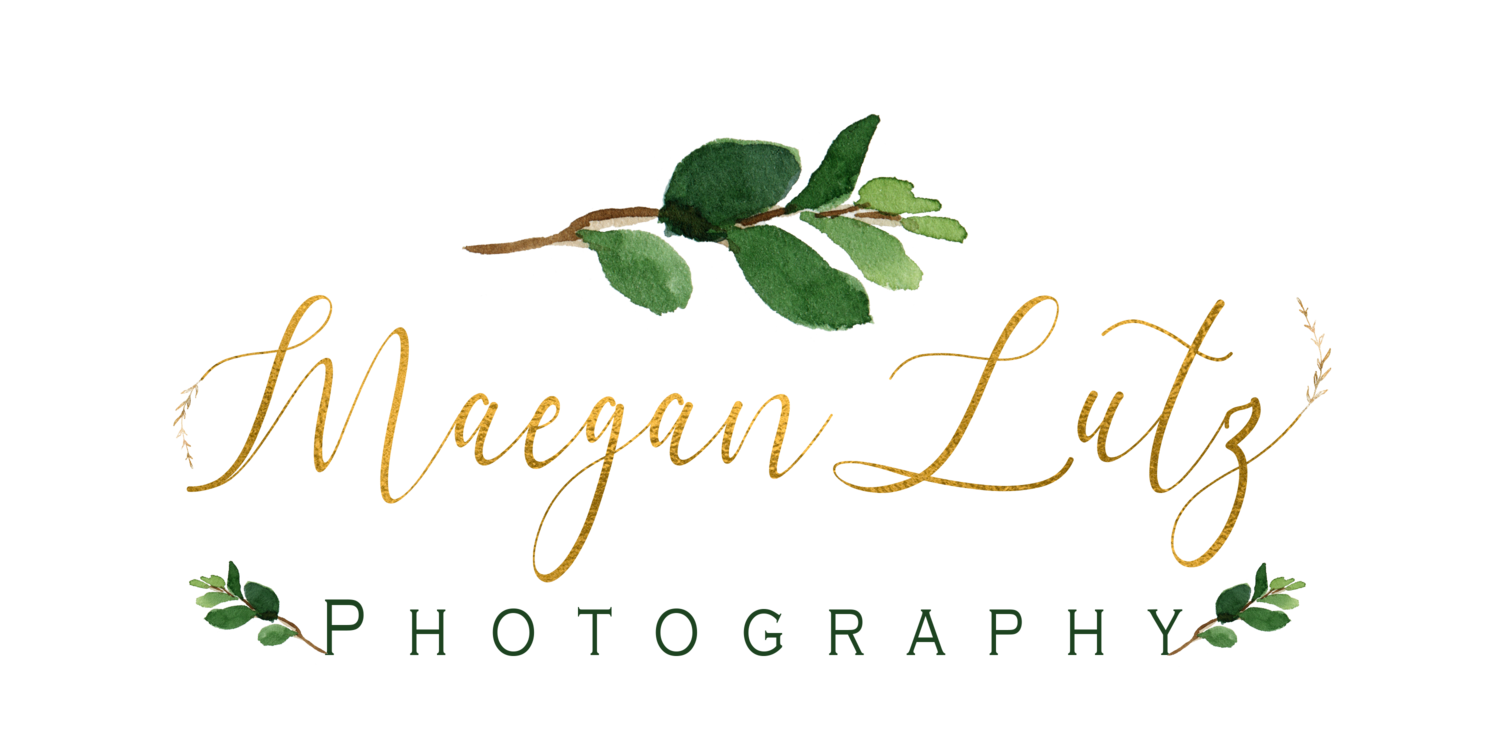 Destination, NEPA, & Central PA Wedding, Engagement & Portrait Photographer