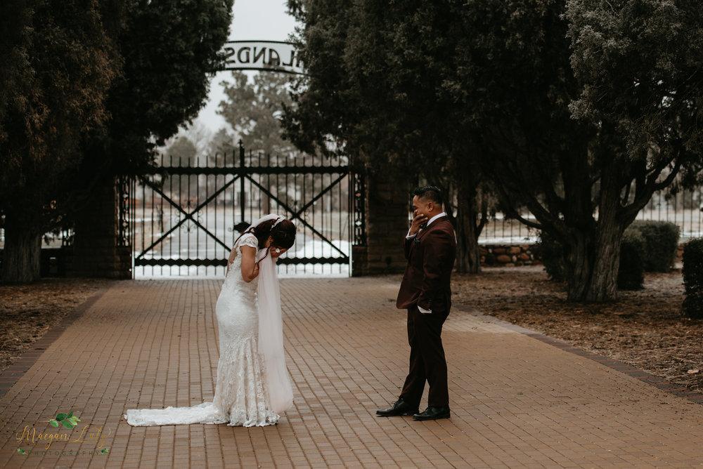 NEPA-Destination-wedding-photographer-at-Highlands-Ranch-Mansion-Denver-CO-165.jpg
